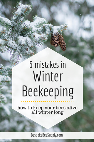 How to keep bees alive in winter: 5 beginner beekeeper mistakes to avoid. Bespoke Bee Supply