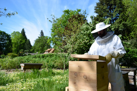 Need environmentally friendly gift ideas? These sustainable bee hives give to your loved ones and give back to the planet. They're now 15% off! Bespoke Bee Supply