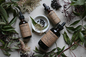 Tincture Making: Preserving Your Medicine