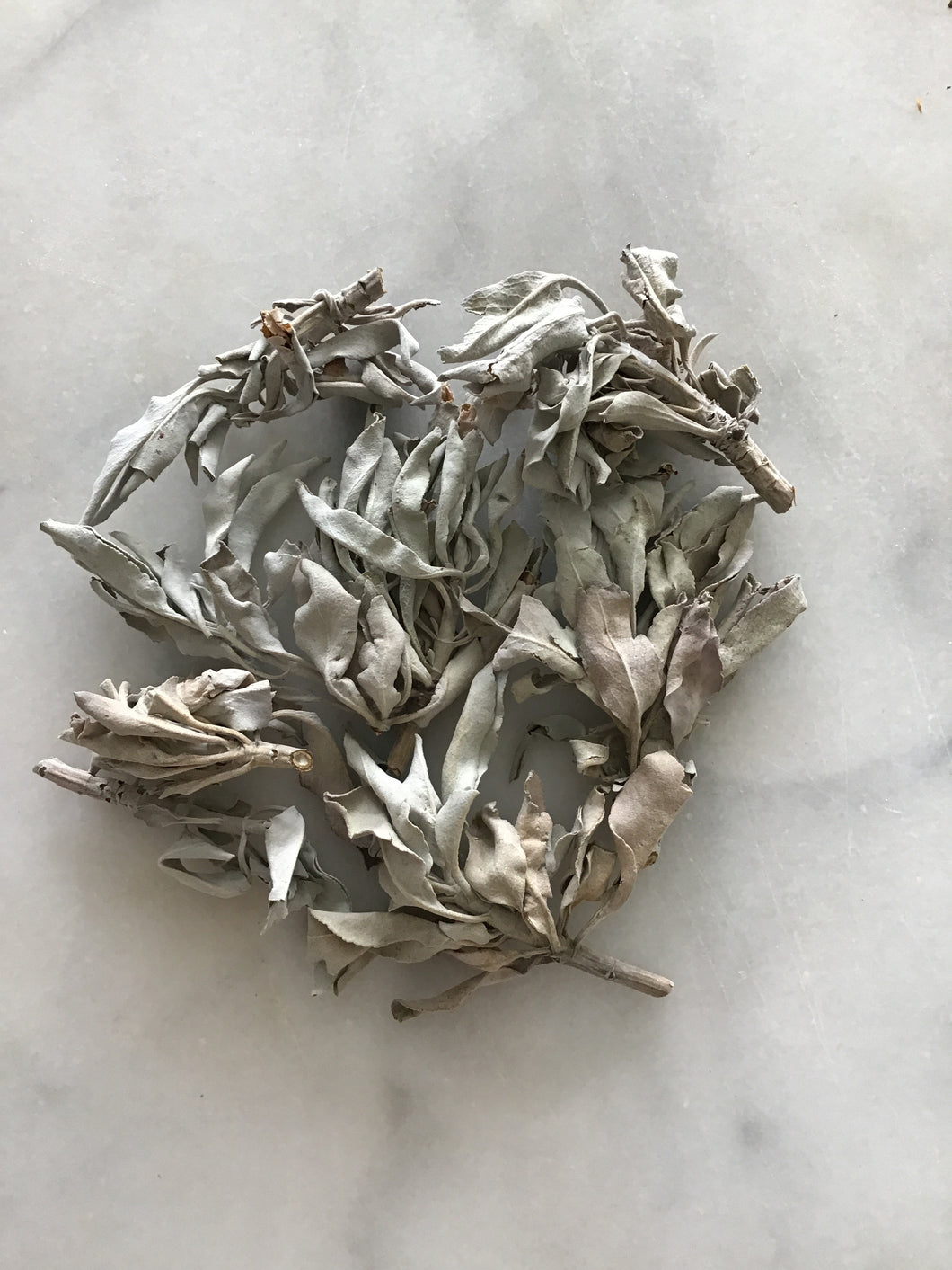 Ethically Wild Harvested White Sage