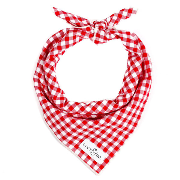 Pet Bandana Red Check