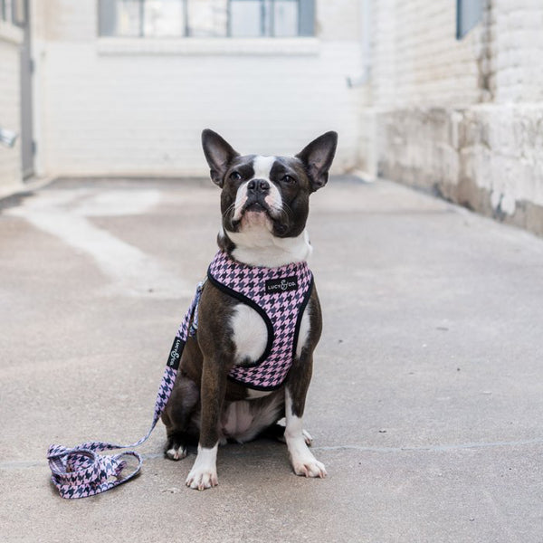 Pet Harness Pink Houndstooth
