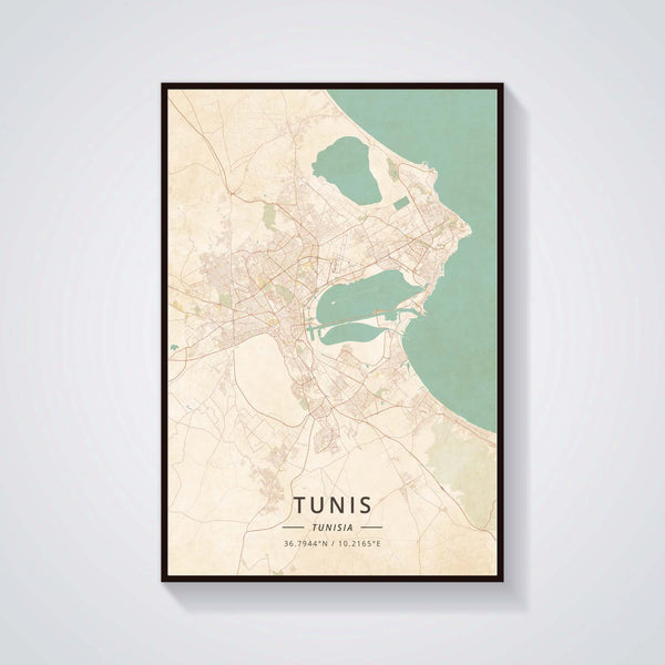 Tunis Sky-view Color Poster