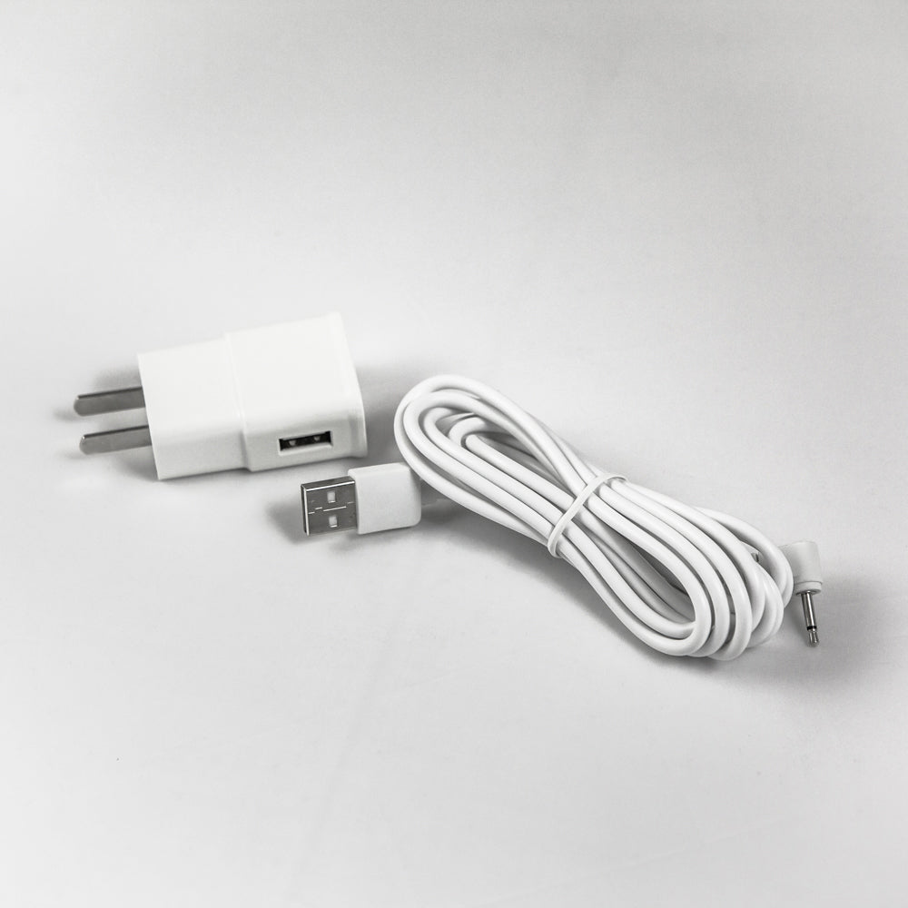Replacement USB Charger With US AC/DC Adapter - Hermes Microneedling Therapy