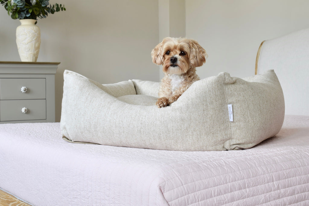 "<img src=""luxurywooldogbed.jpg"" alt=""Luxury wool dog bed in light biscuit fabric in bedroom setting"">"