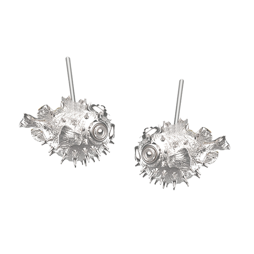 Blowfish Aretes