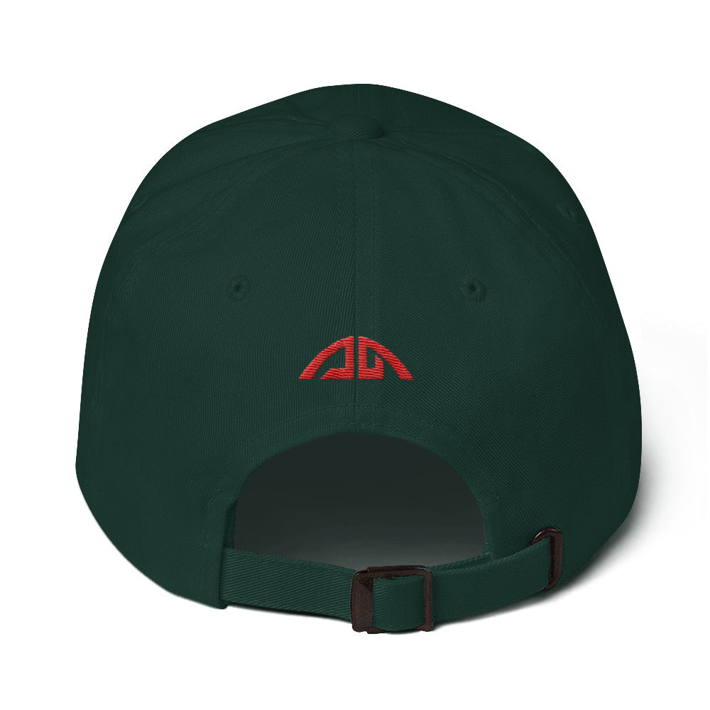 AMG Flag Dad hat
