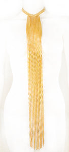 Elongated Chain Fringe Necklace