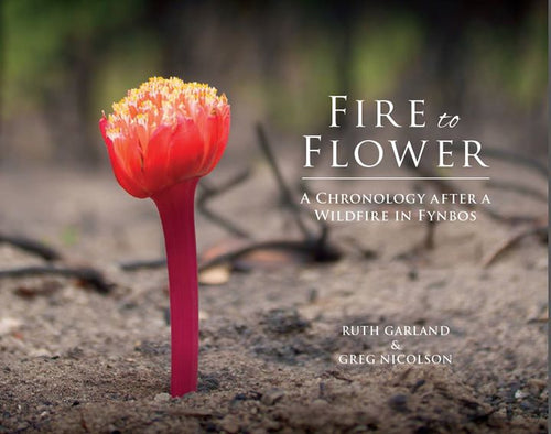 Fire to Flower Book