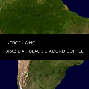 Brazilian Black Diamond Single Origin Coffee in Calgary