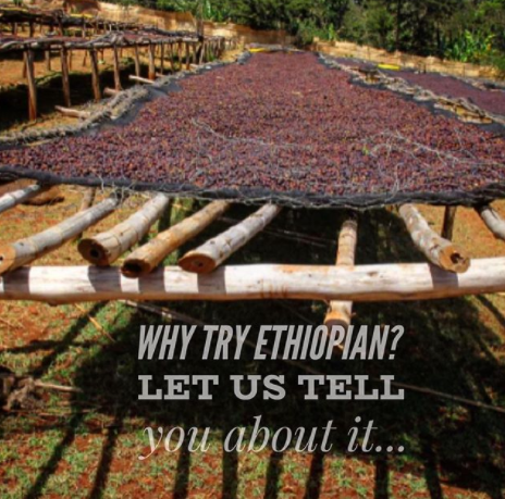 What is an Ethiopian Coffee Like?  And Why You Should Try It...