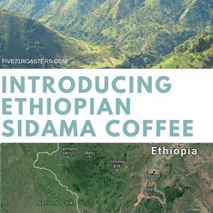 Introducing the Ethopian Heirloom Sidama Roast, Ethiopian Coffee Beans in Calgary