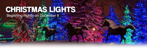 Spruce Meadows Christmas Lights 2019