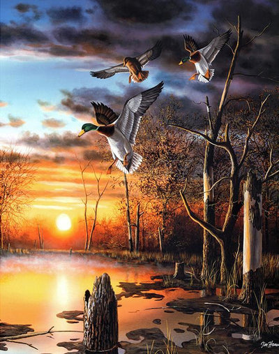 Flying Duck Diamond Painting