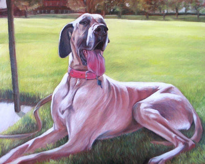 16x12inches Big Great Dane Dog Square Diamond Painting