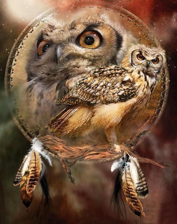 16x12inches Owl Dream Catcher Square Diamond Painting