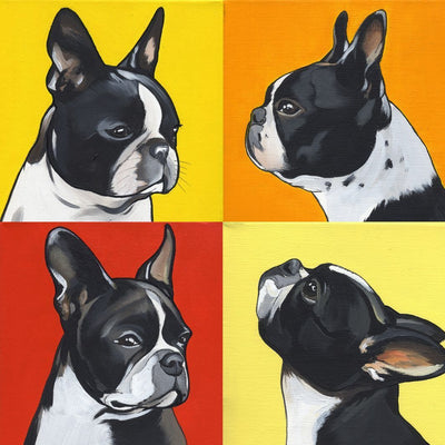 4 Shades of Boston Terrier Diamond Painting  - Pretty Neat Creative