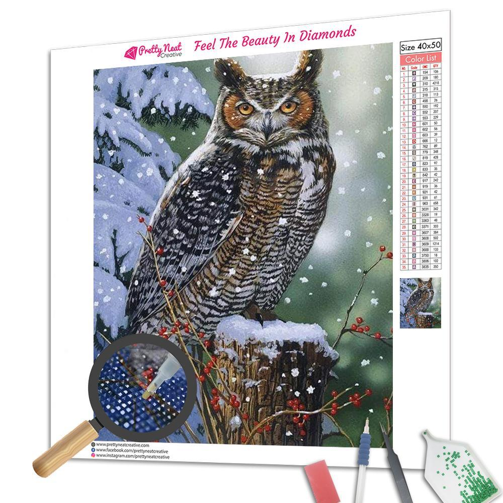 Archimedes Owl Diamond Painting