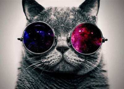 Cat Space Glasses Round Diamond Painting