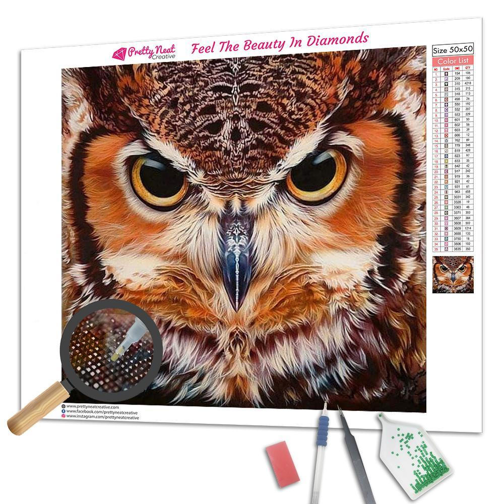 Cherokee Owl 5D Diamond Painting