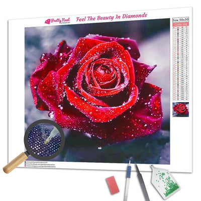 Clearance - Rose Diamond Painting