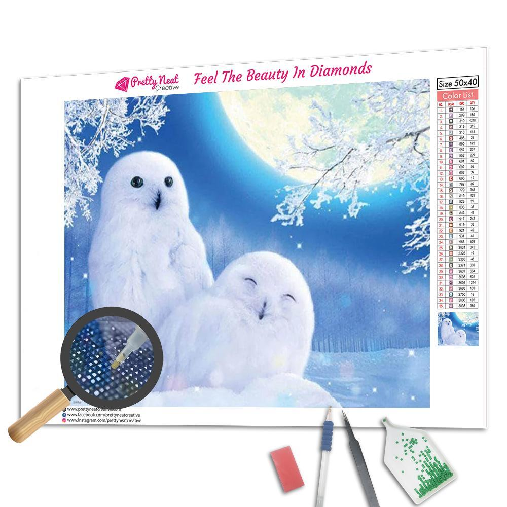 Couple Snowy Owl Diamond Painting