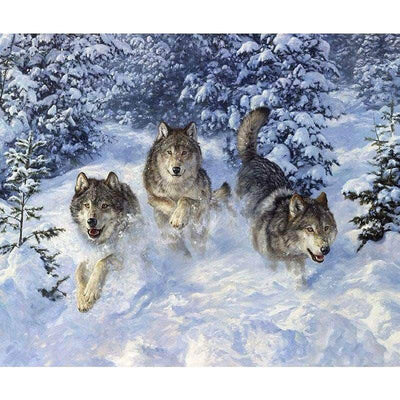 Freedom Wolf Square Diamond Painting
