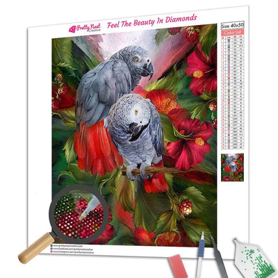 Lover Parrot Square Diamond Painting