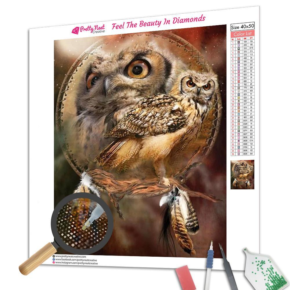 Owl Dream Catcher Square Diamond Painting