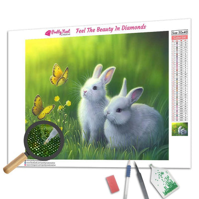 Rabbit&Butterfly Square Diamond Painting