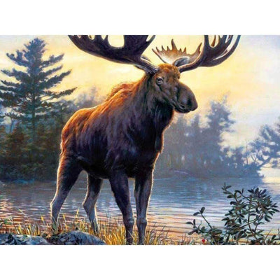 Square Drill 20x30 Cm / 8x12 Inch Clearance - Moose 5D Diamond Painting