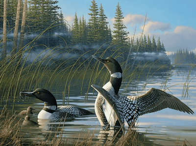 "Square Drill 8"" x 12"" (20cm x 30cm)ch Loon Family Diamond Painting"