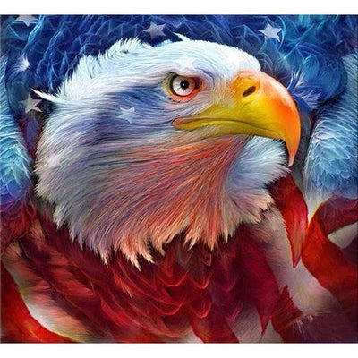 Square Drill 30x30 Cm / 12x12 Inch Clearance - American Eagle 5D Square Diamond Painting