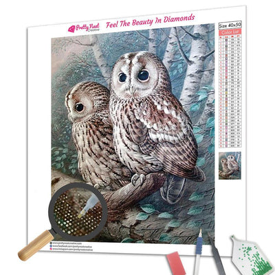 The Tawny Owl Square Diamnond Painting