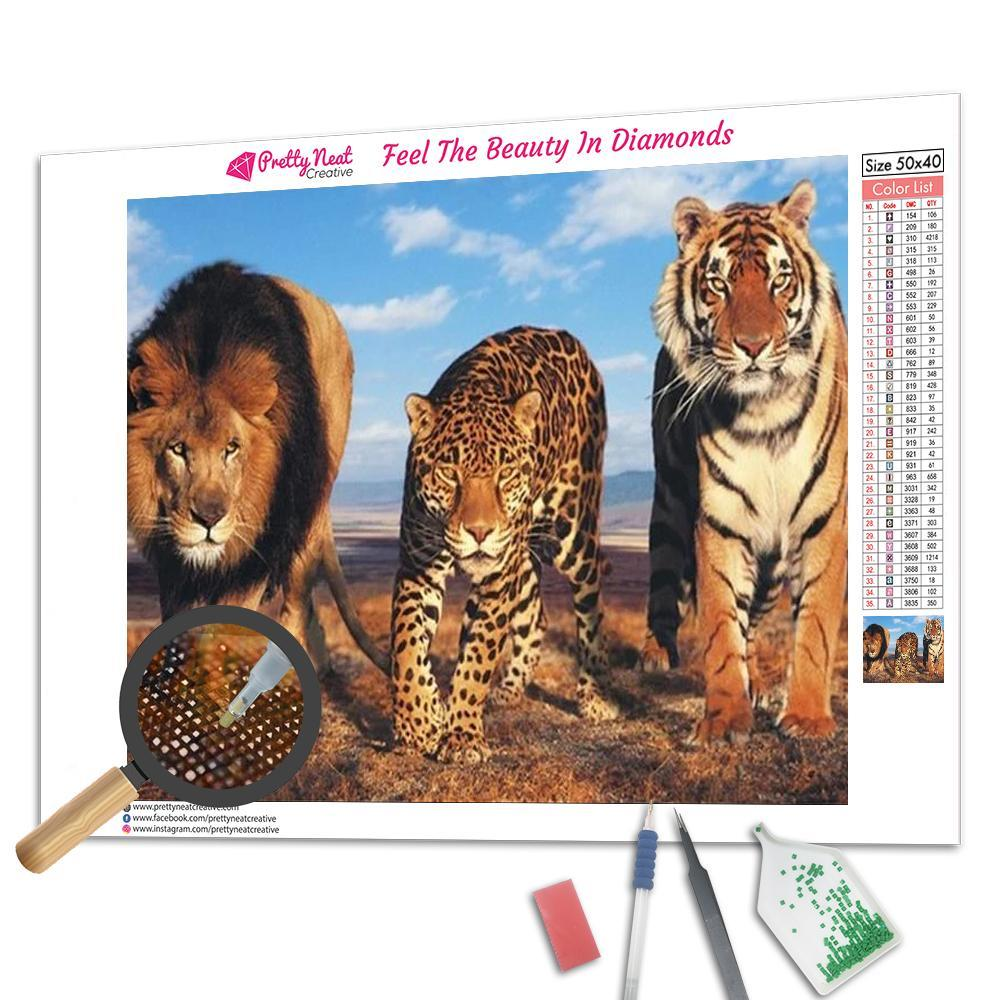 We Are Bigboy Square Diamond Painting