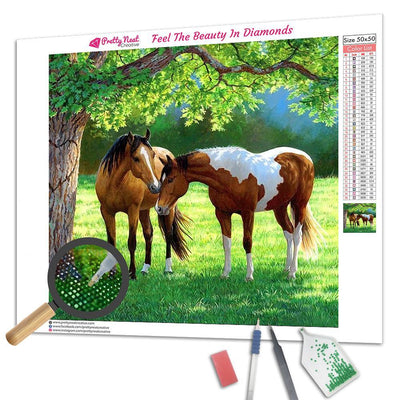Weirs Horses Square Diamond Painting