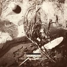 David Sylvian - Secrets of the Bee Hive