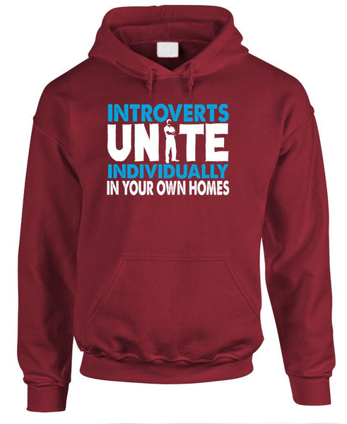 INTROVERTS UNITE - By Yourselves At Home - Fleece Pullover Hoodie (fleece)