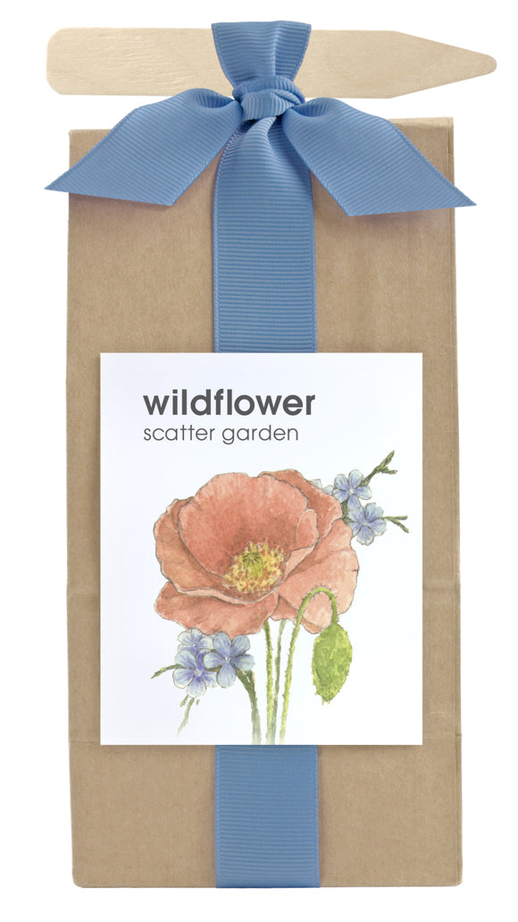 Potting Shed Creations - Scatter Garden - Wildflower