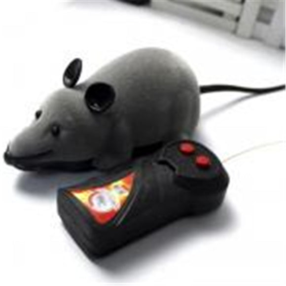 RC Mouse and Remote Fun for Cats