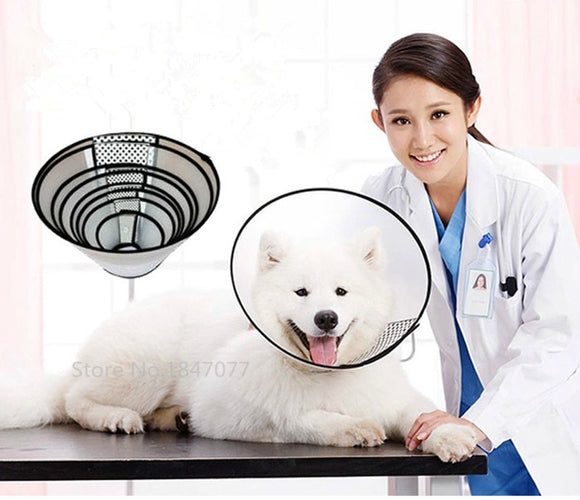 Plastic Pet Collar Dogs Cats Health