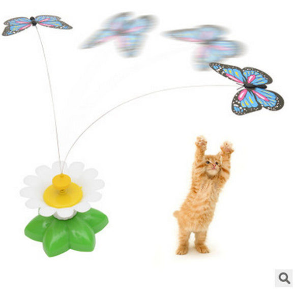 Electric Butterfly Cat Teaser Toy