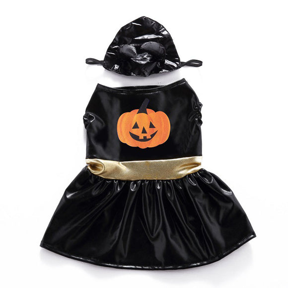 Witch Halloween Dog Clothes for Small Dogs Dress with Hat Winter Warm Pet Costume Puppy Yorkshire Chihuahua Clothing Apparel