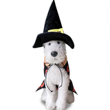 Pet Witch Costumes Suit Halloween Cats Dogs