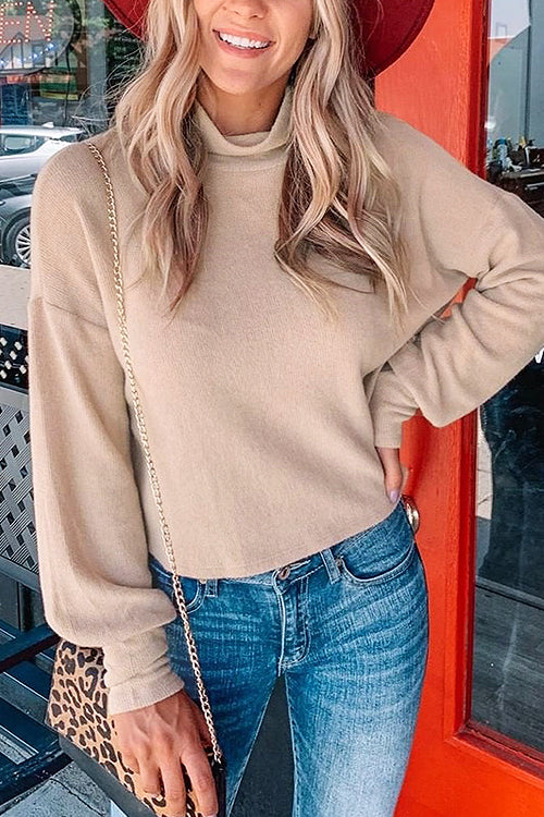 Suzanne Turtleneck Long Sleeve Knit Top