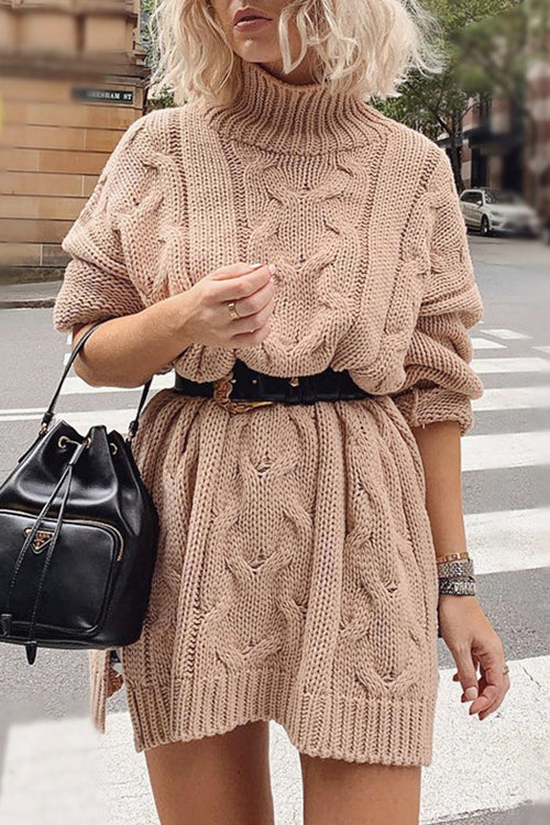Morning Chill High-Neck Sweater Dress - 2 Colors