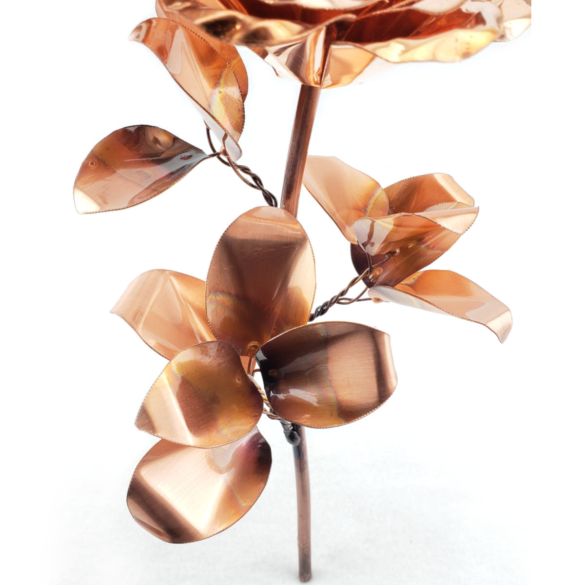 Timeless Rose - Gifts for birthdays, weddings, anniversary, valentines - Steel Rose Company