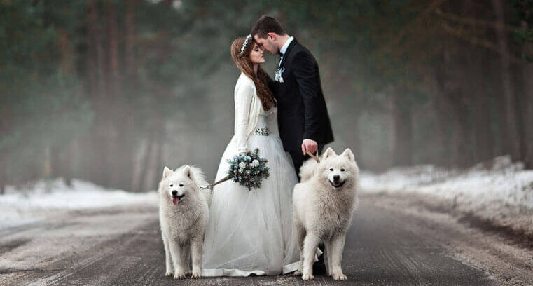 10 Awesome Winter Wedding Ideas