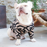 high end dog clothing