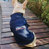 designer dog clothing